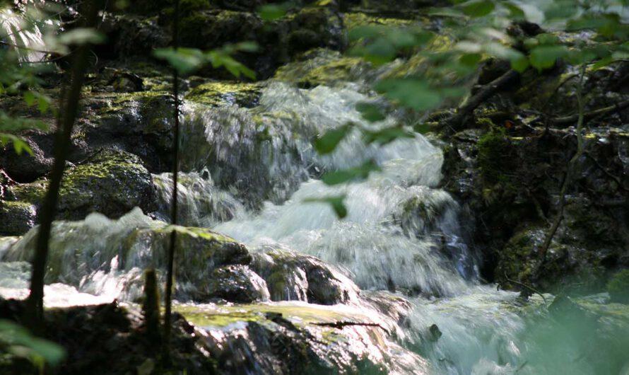 """Themenführung """"Auf Wasserwegen durch die Stadt"""""""