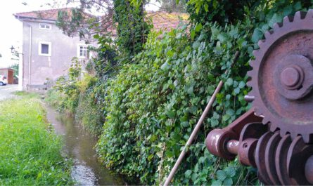 Mühlenlehrpfad, Wassernutzung, Mühlbach, Tittmoning, Stadtbach, Wasserkraft,